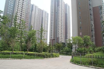 瑞锦小区绿化工程