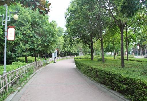 双秀公园绿化工程项目