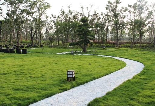 苑陵故城绿化项目